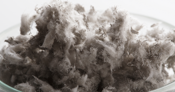 Asbestos removal not just a risk for the worker