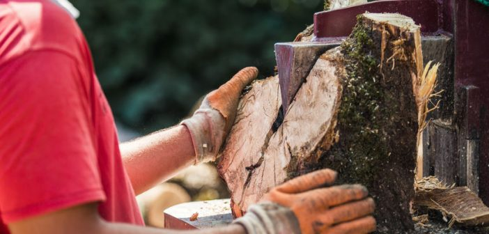Manager covers up wood splitter injury