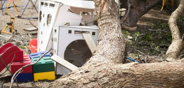 Companies sentenced after tree falls on children